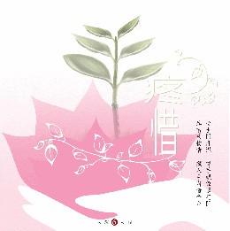大愛人間6-疼惜(台語專輯)CD